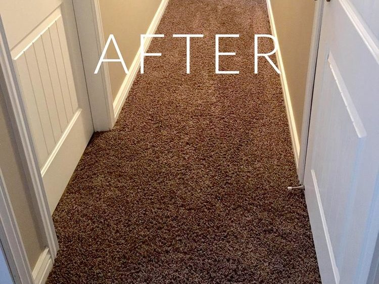 Hallway after carpet- repair